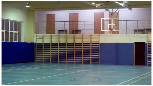 Сценарий спортивного праздника 23 февраля для дошкольников